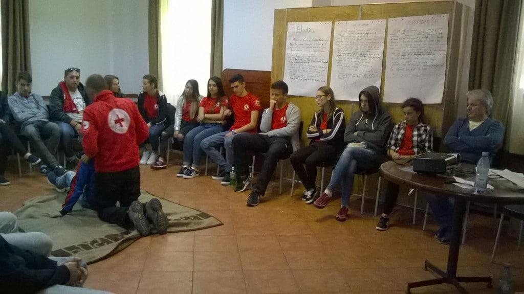 Educatie Sanitara pt tineret_2017 (19)