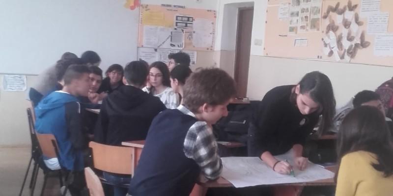 Tineri Informati_2018 (4)